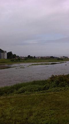 今日の渡良瀬川(2007年6月11日)