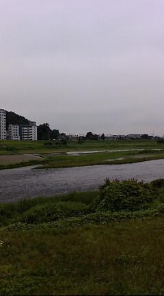 今日の渡良瀬川(2007年6月25日)