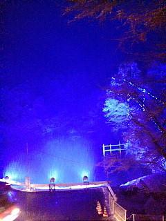 6月の森ハーブガーデン