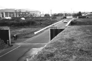 岡山市百間川